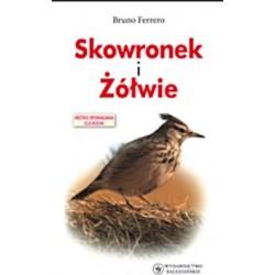 Skowronek i Żółwie - Bruno Ferrero