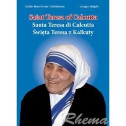 Mother Teresa Center - Święta Teresa z Kalkuty (Michalineum)
